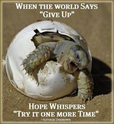 image: Humanity Healing
